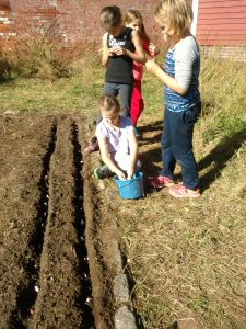 4th-gd-planting-garlic
